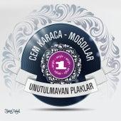Unutulmayan Plaklar Arşiv, Vol. 1 by Various Artists
