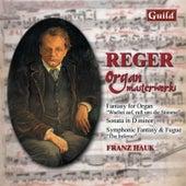 Reger: Fantasy for Organ, Sonata in D Minor, Symphonic Fantasy Fugue 'The Inferno' by Franz Hauk