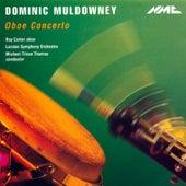 Dominic Muldowney: Oboe Concerto von Roy Carter