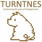 Turntnes von Various Artists