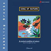 Song Of Nature - Babbling Brooks von Vishwa Mohan Bhatt