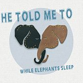 While Elephants Sleep von He Told Me To