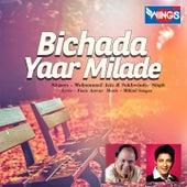 Bichada Yaar Milade by Various Artists