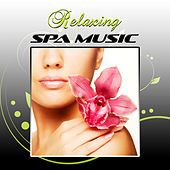 Relaxing Spa Music - Mood Wellness Center Songs, Relaxing Health Zen Spa Music, Tranquil Background Music for Spa, Well Being and Healthy Lifestyle by S.P.A