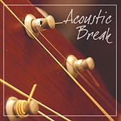 Acoustic Break von Various Artists
