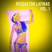 Reggaeton Latinas, Vol. 1 de Reggaeton Hits
