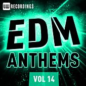 EDM Anthems, Vol. 14 - EP by Various Artists