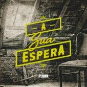 A Sua Espera by Plunk