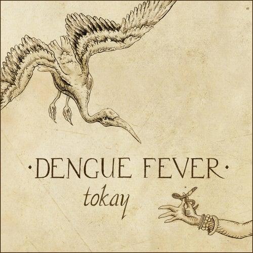 Tokay by Dengue Fever