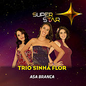 Asa Branca (Superstar) - Single von Trio Sinhá Flor