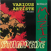 Buffalo Muzic Stampede by Various Artists