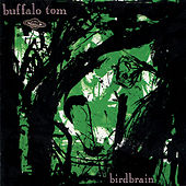 Birdbrain de Buffalo Tom