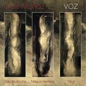 Voz by Luis Muñoz