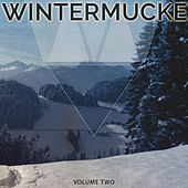 Wintermucke, Vol. 2 (Finest Smooth Electronic Beats) by Various Artists