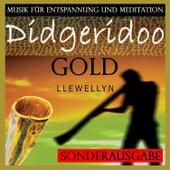 Didgeridoo Gold: Musik für Entspannung und Meditation: Sonderausgabe von Llewellyn
