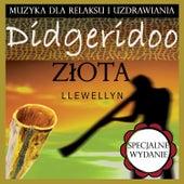 Didgeridoo Złota: Muzyka dla Relaksu i Uzdrawiania: Specjalne Wydanie von Llewellyn