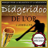 Didgeridoo de l'or: musique pour la relaxation et la méditation: édition spéciale de Llewellyn
