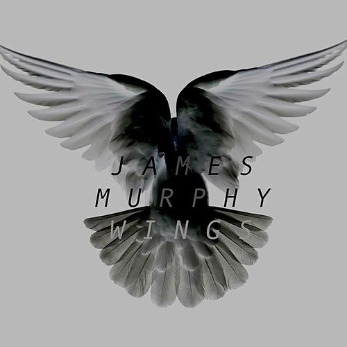 Wings by James Murphy