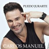 Puedo Jurarte by Carlos Manuel