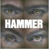 Realize von Hammer