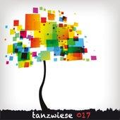 Tanzwiese 017 fra Various Artists