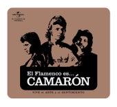 Flamenco es... Camaron de Camarón de la Isla