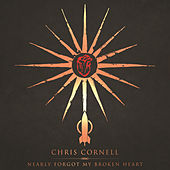 Nearly Forgot My Broken Heart by Chris Cornell