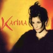 Porque Si No Estas by Karina