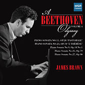 A Beethoven Odyssey, Vol. 4 de James Brawn
