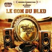 Le son du bled de Various Artists