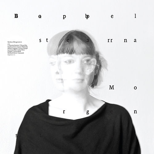Doppelstern by Barbara Morgenstern