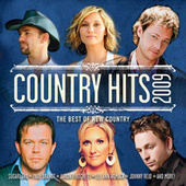 Country Hits 2009 by Various Artists