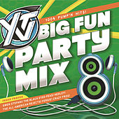 YTV Big Fun Party Mix 8 by Various Artists