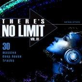 THERE'S NO LIMIT, VOL. 1 (30 Massive Deep-House Tracks) de Various Artists