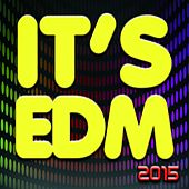It's EDM 2015 (49 Dance Hits) by Various Artists