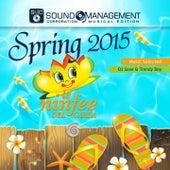 Le ninfee del Garda Spring 2015 (Music Selected: DJ Save & Trendy Boy) von Various Artists