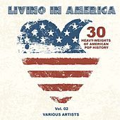Living In America, Vol. 2 (30 Heavy-Weights Of American Pop History) de Various Artists