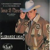 El Grande Ligas by El Lobito De Sinaloa