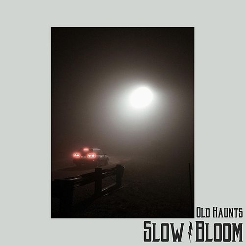 Slow Bloom by The Old Haunts