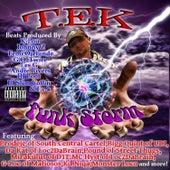 The Funk Storm de Tek