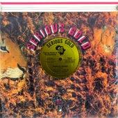 Computer Reggae de George Nooks