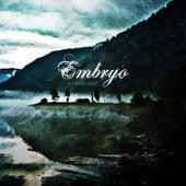 A Fervent Sense - EP de Embryo