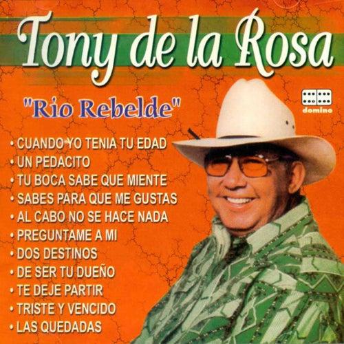 Río Rebelde by Tony De La Rosa