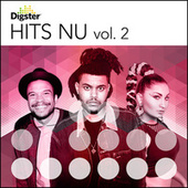 Digster Hits Nu Vol. 2 by Various Artists