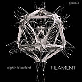 Filament von Eighth Blackbird