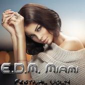 EDM Miami Festival, Vol. 4 de Various Artists