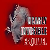 Nearly Invisible by Esquivel