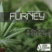 Fresh Buds EP de Furney