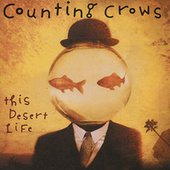 This Desert Life de Counting Crows