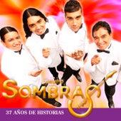 37 Años de Historias de Grupo Sombras